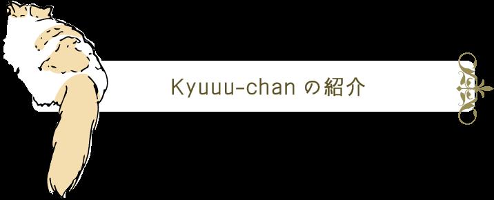 Kyuuu-chanの紹介